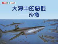 大海中的惡棍 [有聲書]:沙魚