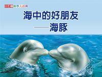 海中的好朋友 [有聲書]:海豚