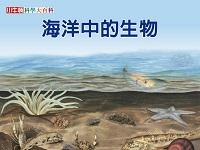 海洋中的生物 [有聲書]