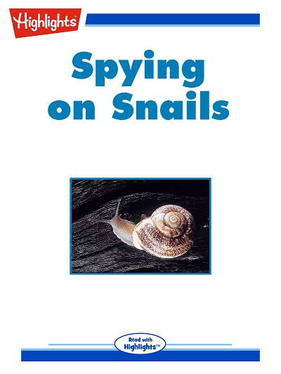 Spying on snails [有聲書]