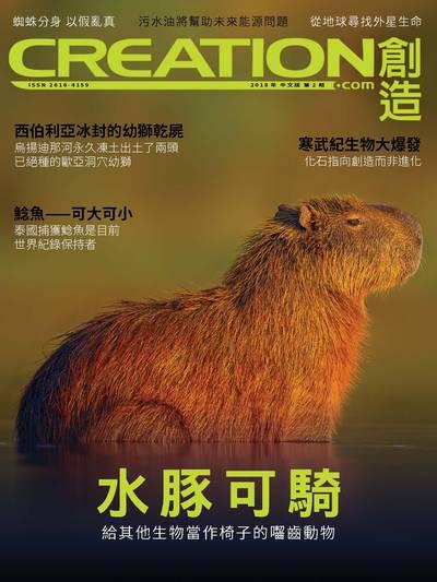 創造雜誌 [2018年第2期]:水豚可騎