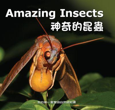 神奇的昆蟲 [有聲書]