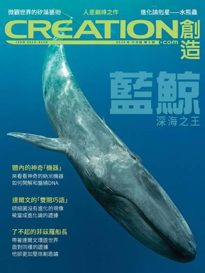 創造雜誌 [2019年第5期]:藍鯨 深海之王