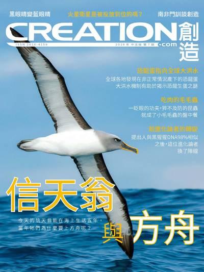 創造雜誌 [2019年第7期]:信天翁與方舟