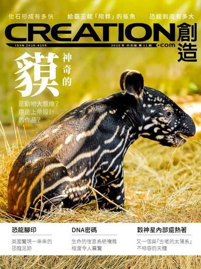 創造雜誌 [2020年第11期]:神奇的貘