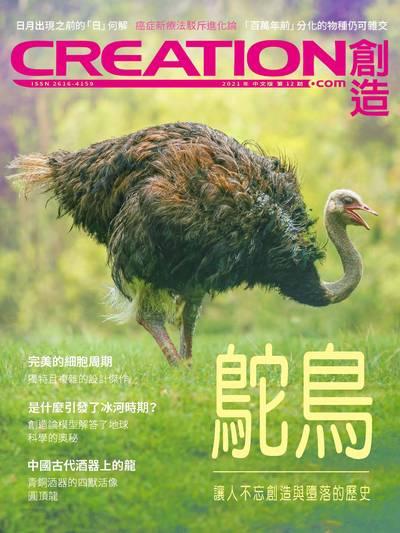 創造雜誌 [2021年第12期]:鴕鳥