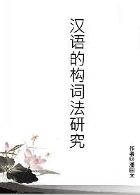 漢語的構詞法研究