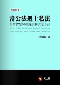 當公法遇上私法:臺灣智慧財產訴訟制度之今昔