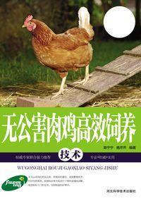 無公害肉雞高效飼養技術