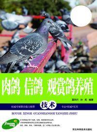 肉鴿、信鴿、觀賞鴿養殖技術